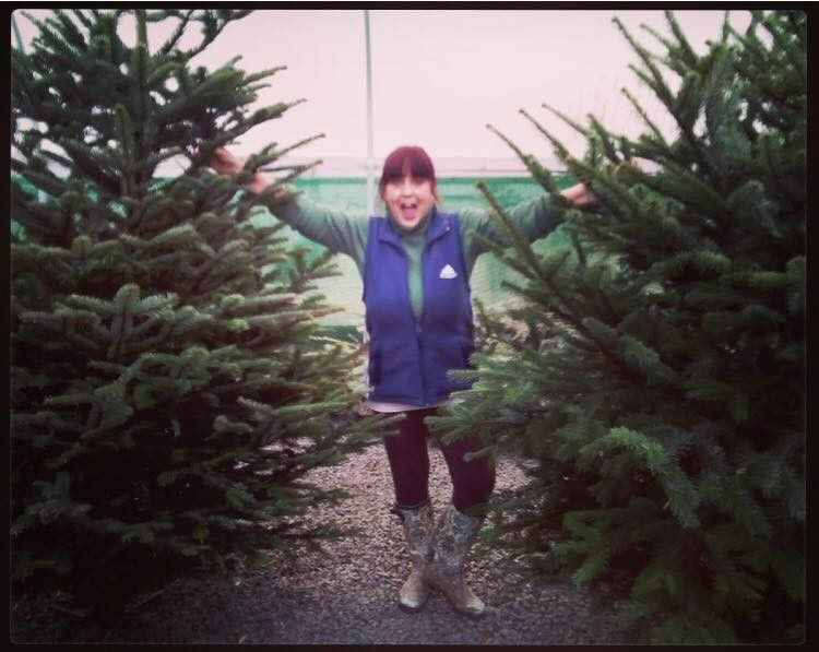 Christmas Tree's are arriving!